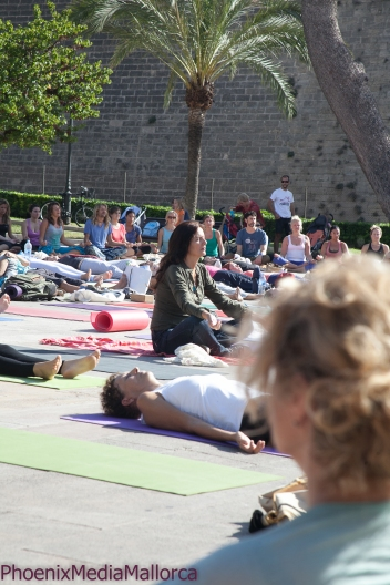 Palma goes Yoga (12 of 18)