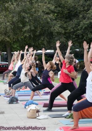 Palma goes Yoga (5 of 18)