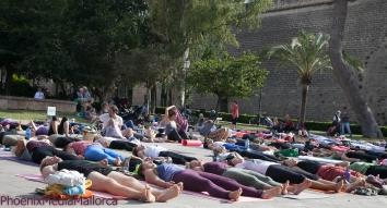 Palma goes Yoga (9 of 18)