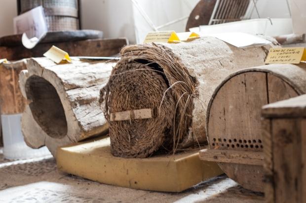 Bees, environment, Vicki McLeod copywriter, Oliver Neilson photographer, Mallorca
