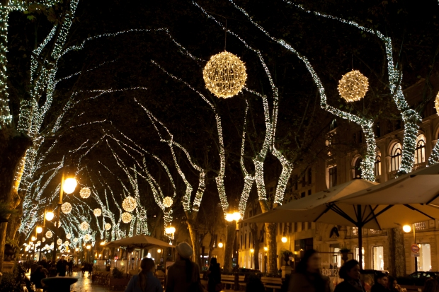 Christmas lights, Palma, Vicki McLeod