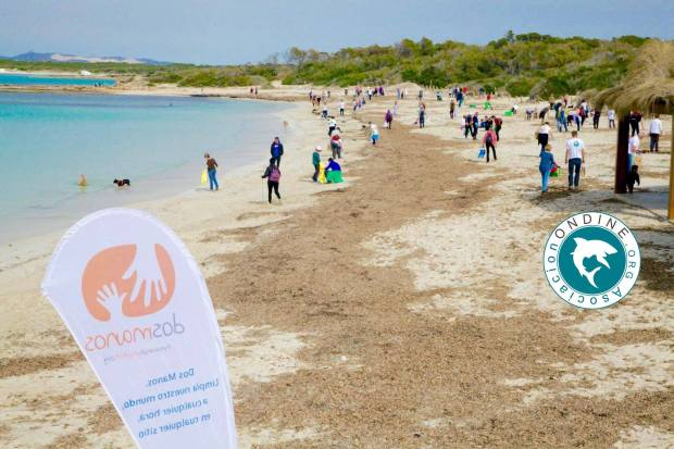 Asociacion Ondine beach clean up at Playa Es Trenc.jpg