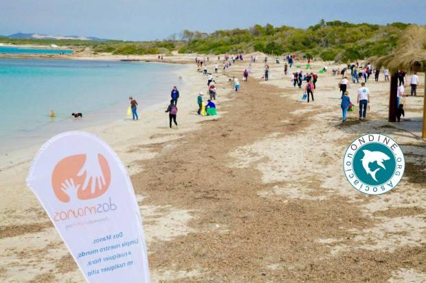 Asociacion Ondine beach clean up at Playa Es Trenc.jpg