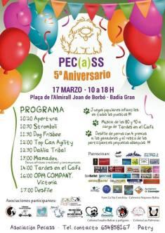 PECSS