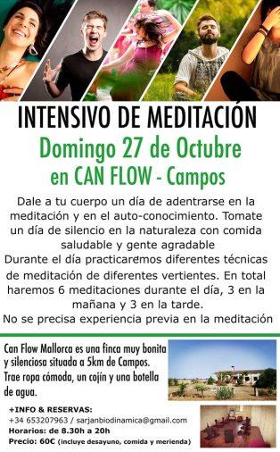meditaiton day